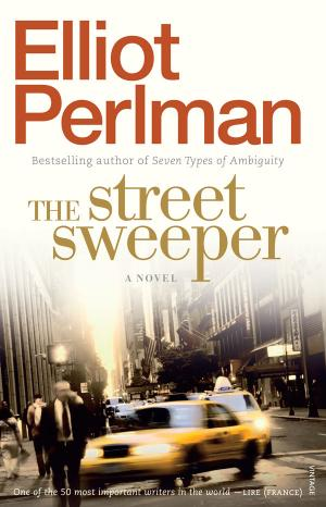The Street Sweeper by Elliot Perlman